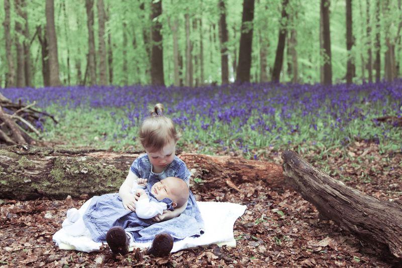 Rosewarne Cox Photography Bluebells