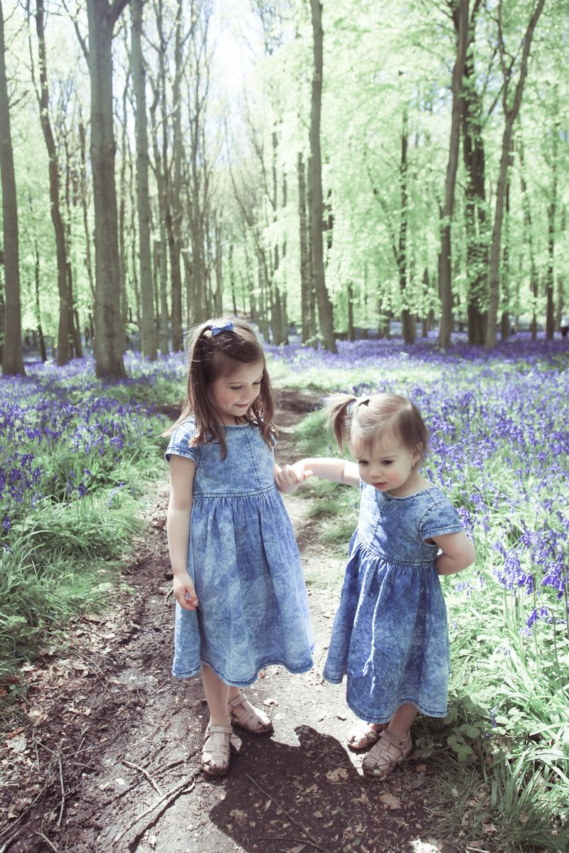 Rosewarne Cox Photography bluebells